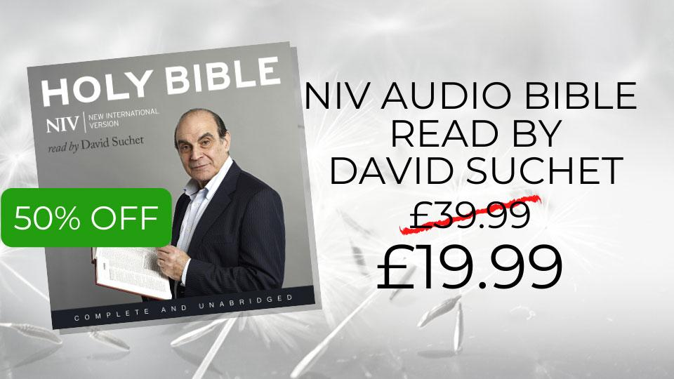 NIV audio