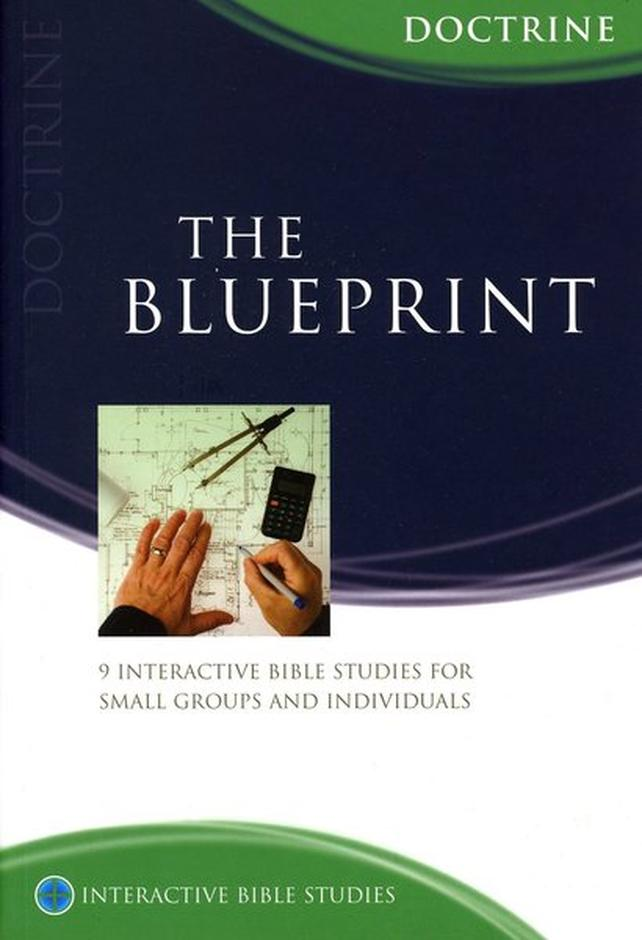 The blueprint doctrine ibs paperback tony payne 10ofthose over 13 off rrp malvernweather