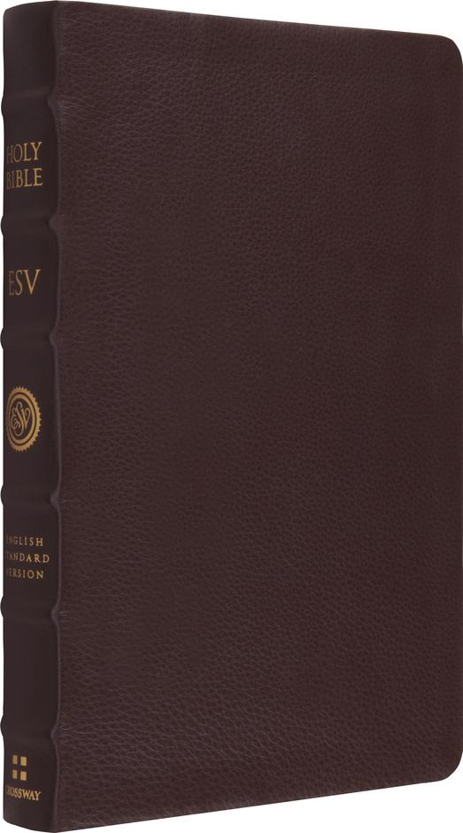 ESV Large Print Thinline Ref Brown BL