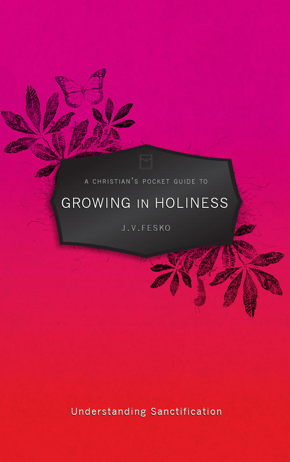 A Christian's Pocket Guide To Growing in Holiness