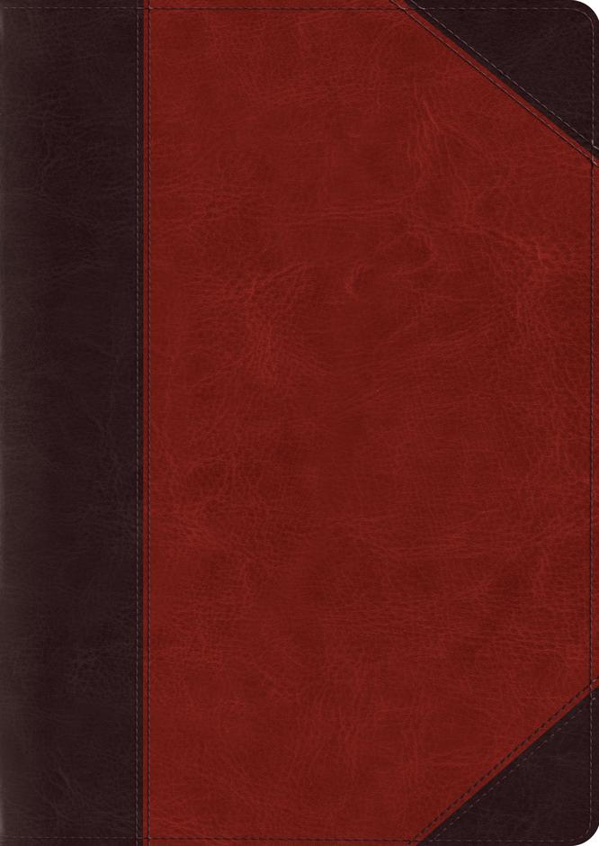ESV Study Bible Large Print TruTone Brown/Cordovan Portfolio Design