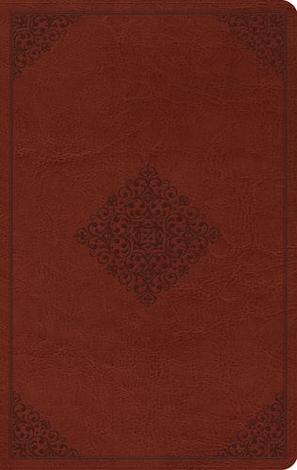 ESV Large Print Value Thinline Bible by