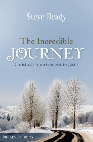 The Incredible Journey by Steve Brady