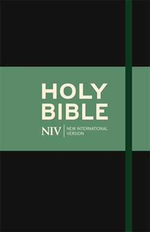 NIV Thinline Cloth Bible by NIV