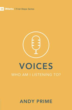 Voices: Who Am I Listening To? by Andy Prime