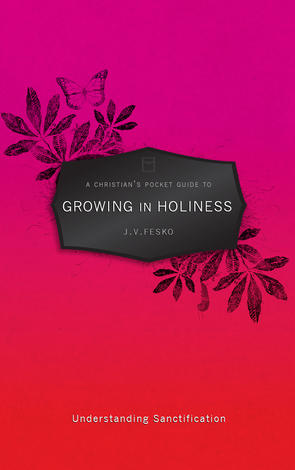 A Christian's Pocket Guide To Growing in Holiness by John V Fesko