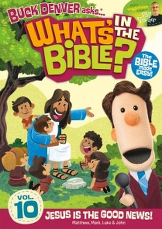 What's in the Bible DVD  (10) by Phil Vischer