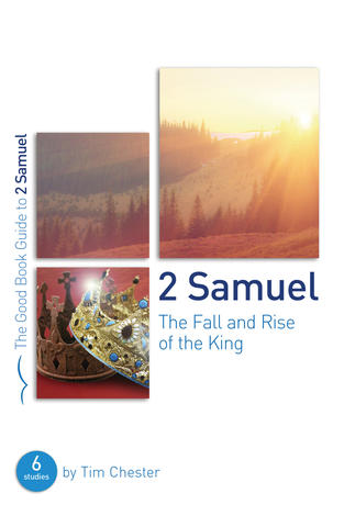 2 Samuel: The Fall and Rise of the King by Tim Chester