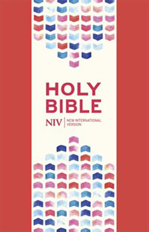 NIV Thinline Bible Coral Soft–tone with Zip by