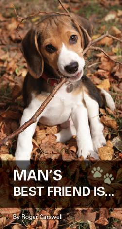 Man's Best Friend [Tract] by Roger Carswell
