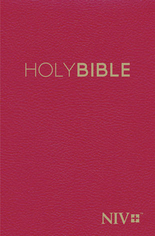 NIV 2011: Popular Hardback Red Pew Bible by
