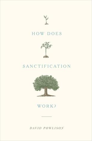 How Does Sanctification Work? by David Powlison