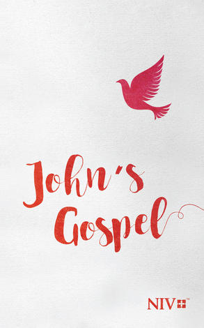 NIV John's Gospel by