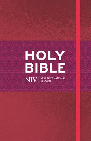 NIV Ruby Thinline Bible by
