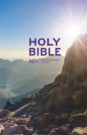 NIV Thinline Value Hardback Bible by