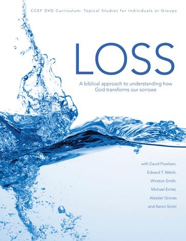 Loss Curriculum by