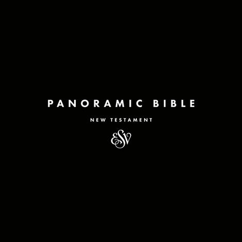Panoramic Bible New Testament by