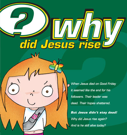 Why Did Jesus Rise? [Children's Edition] by Alison Mitchell