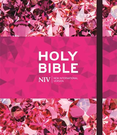 NIV Ruby Journalling Bible by