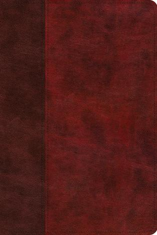 ESV Gospel Transformation Study Bible: Christ in All of Scripture, Grace for All of Life (TruTone, Burgundy/Red, Timeless Design) by