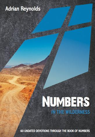 Numbers: In the Wilderness by Adrian Reynolds