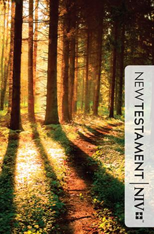 New Testament Path Cover by