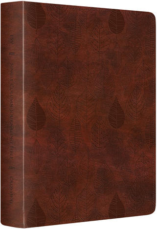 ESV SC Journaling Bible TruTone by