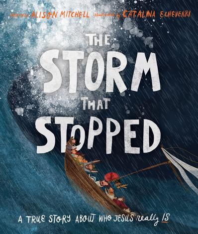 The Storm that Stopped by Alison Mitchell and Catalina Echeverri