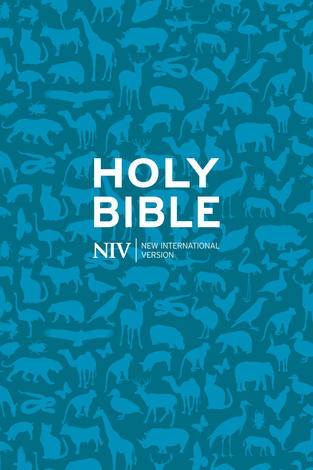 NIV Pocket Paperback Bible by