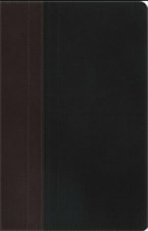 NIV Study Bible Chocolate/Black Duo–Tone by D A Carson